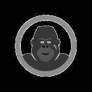 gorilla-tag-programme-small